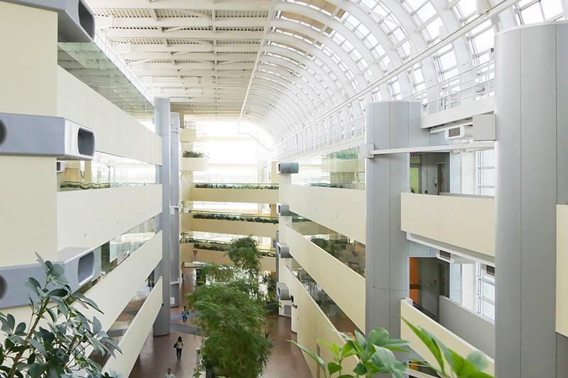 campus3-mov